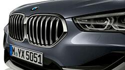 Решітка BMW.