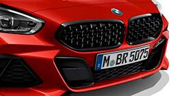 Решетка в сетчатом дизайне BMW.